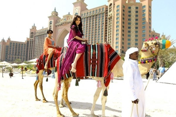 Walks on the beach with camels
