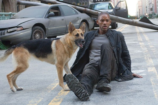 Sam from 'I Am Legend'