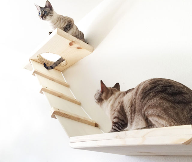 2. Wall Furniture for Cats