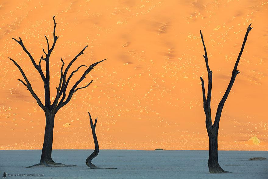 21. Namib Desert, Namibia
