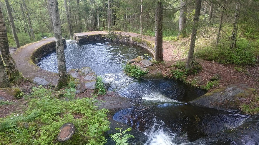 5. Natural Swimming Pool