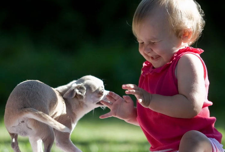 Pets can help kids deal with jealousy