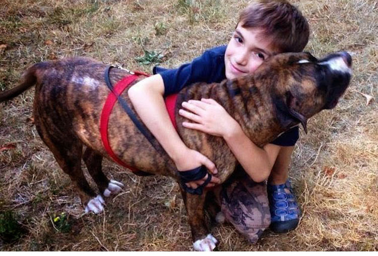 This pit bull saved an 8-year-old kid