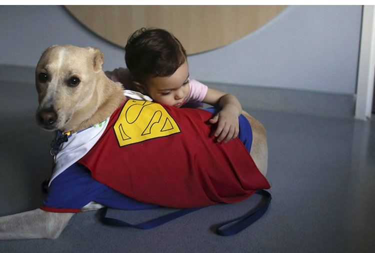 This dog brightens up the Children's Hospital