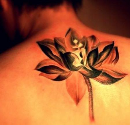 Realistic Lotus