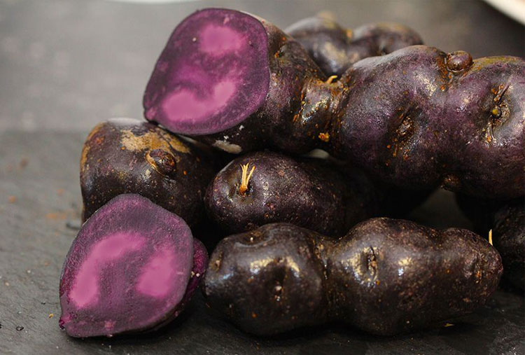 Blue potatoes