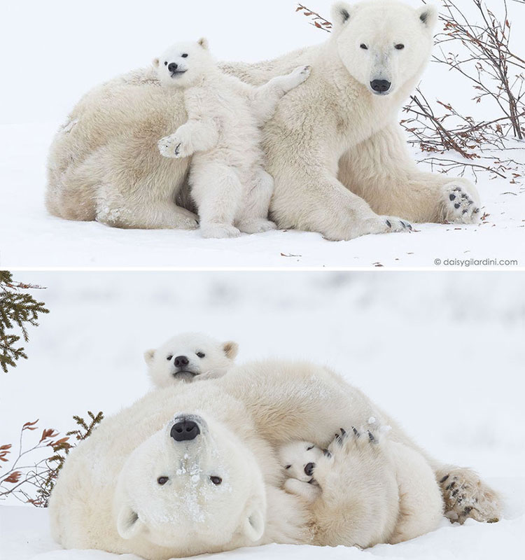 Cuddling with mom