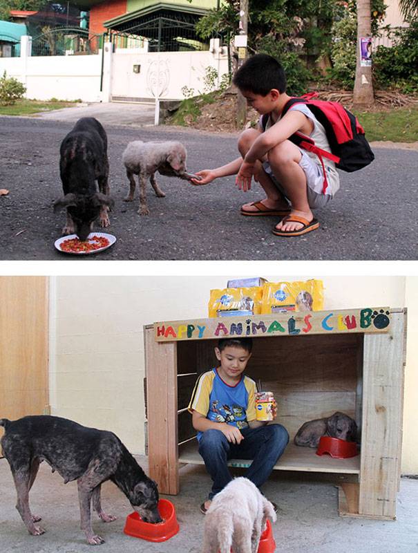 He created an animal shelter