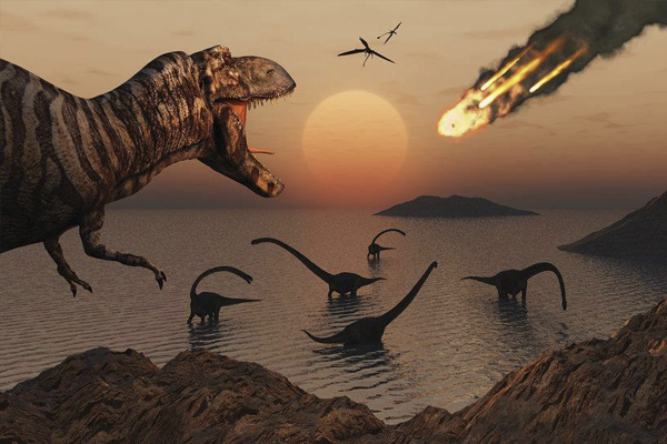 65 million years ago something amazing happened