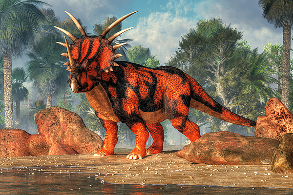 The Torosaurus has the biggest skul in the world