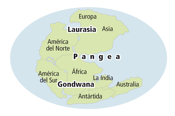 Pangea: all the continents were once a big country