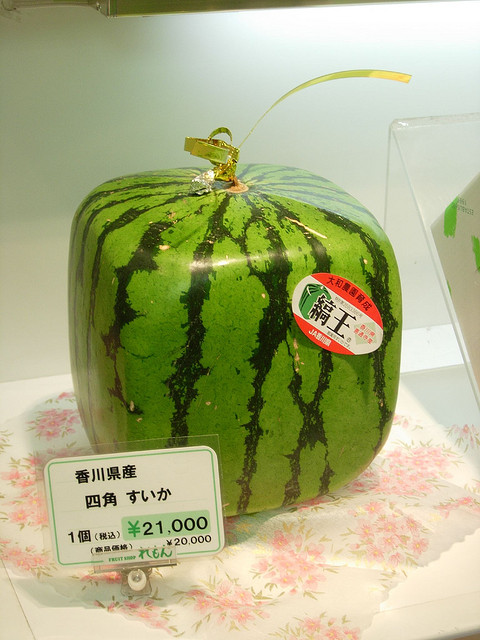 Among the luxurious fruits there is the Square Watermelon!