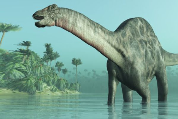 All the dinosaurs got extinct, except for one specie