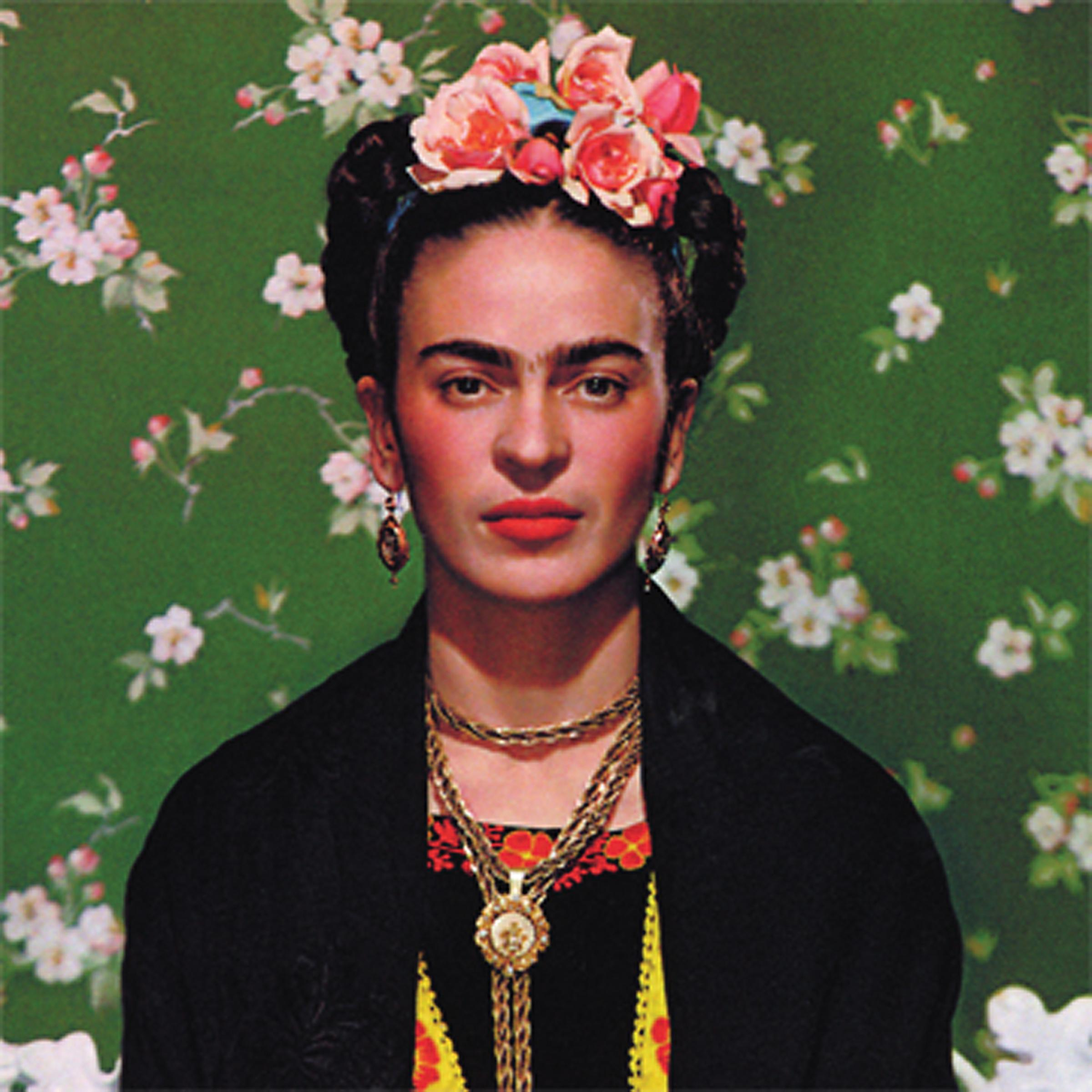 Frida: The Mexican painter