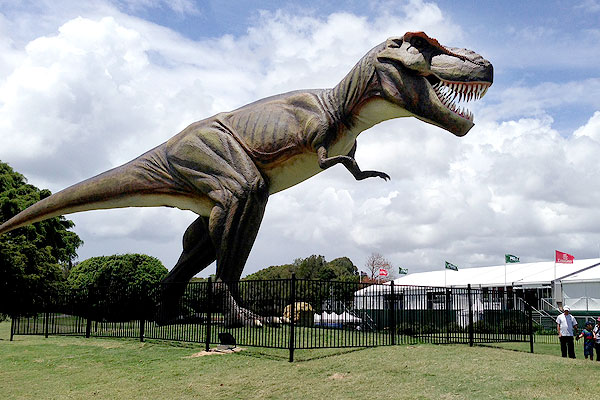¿why does the T Rex had short arms?