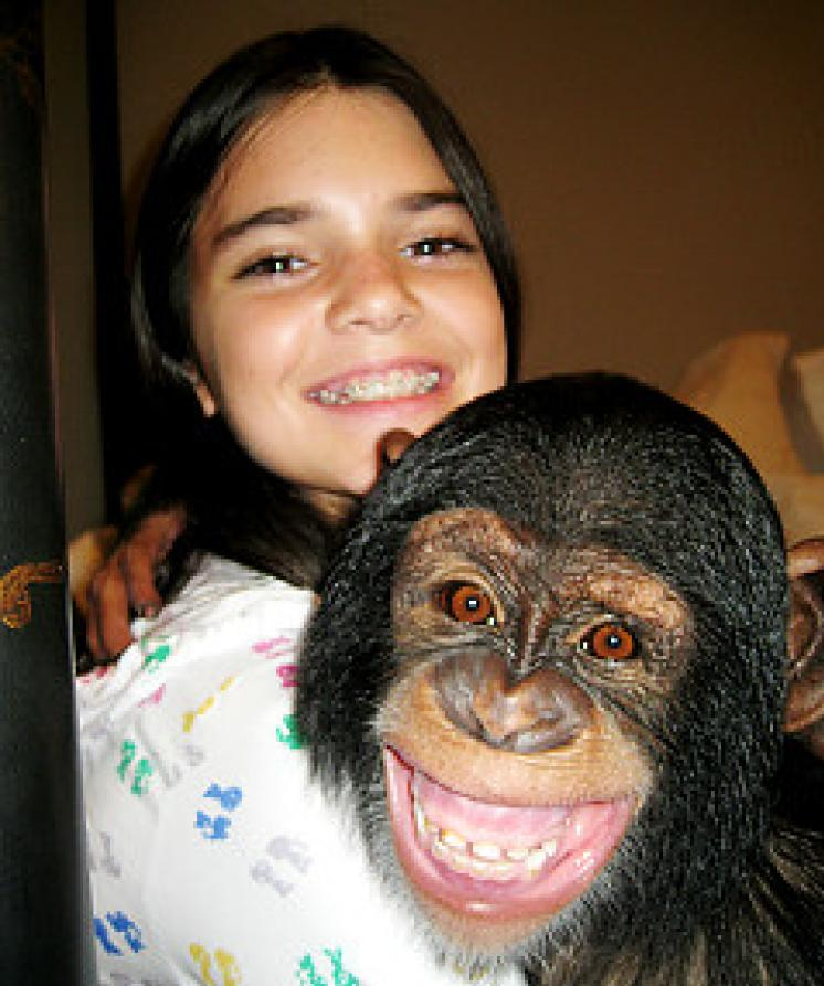 The most famous sisters' chimpanzee
