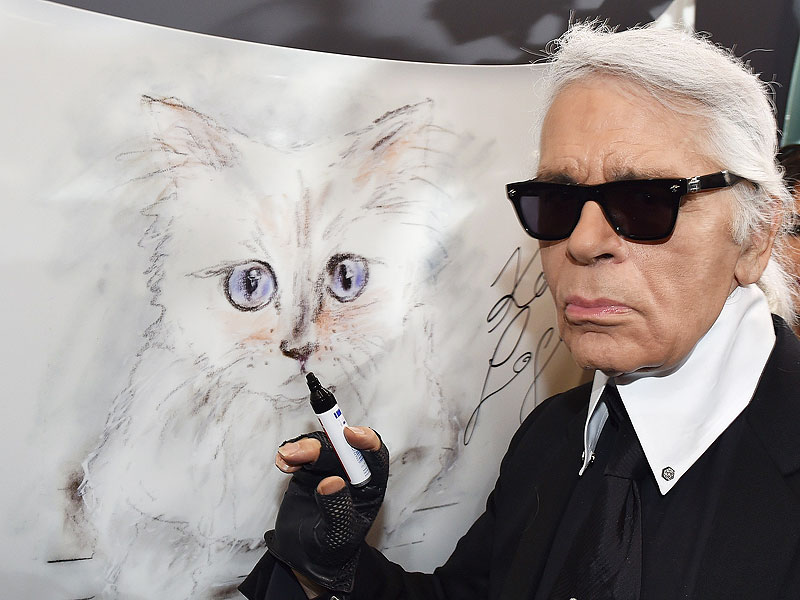 Being a mascot of the designer Karl Lagerfeld has many advantages
