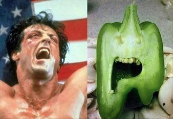 Rocky chili pepper