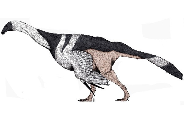 ¿What was the smallest dinosaur?