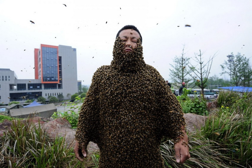 Most bees on a human body