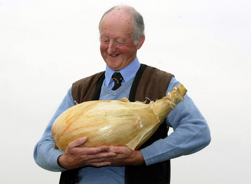 World's largest onion weighing 18lb smashes records