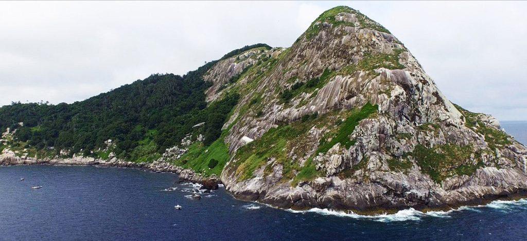 Snake Island - Brazil