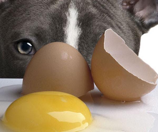 Raw eggs!