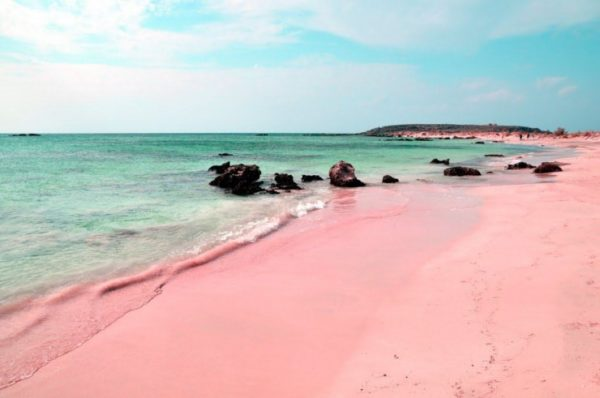 Pink sands beach Harbour Island Bahamas.