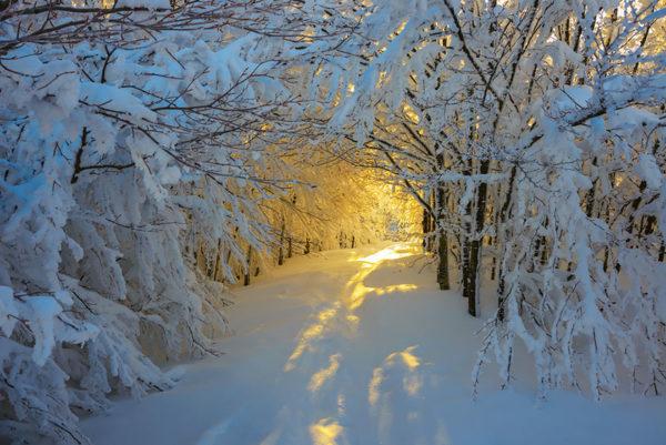Snow White - Italy