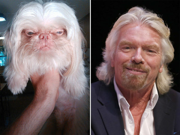 Richard Branson vs dog