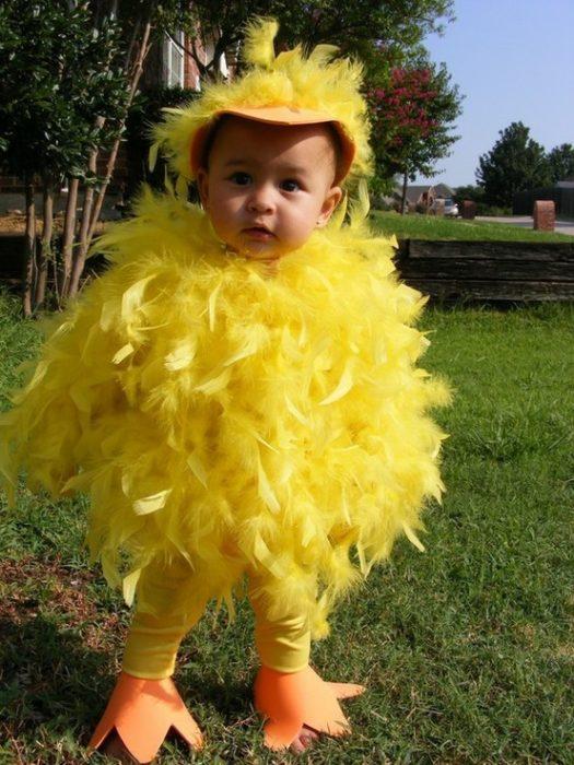 Quack Quack! Ducks over here