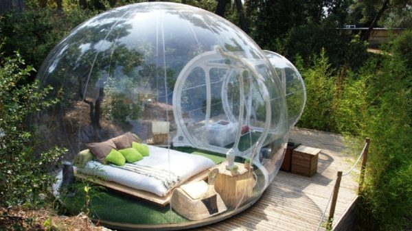 Terrarium room - France