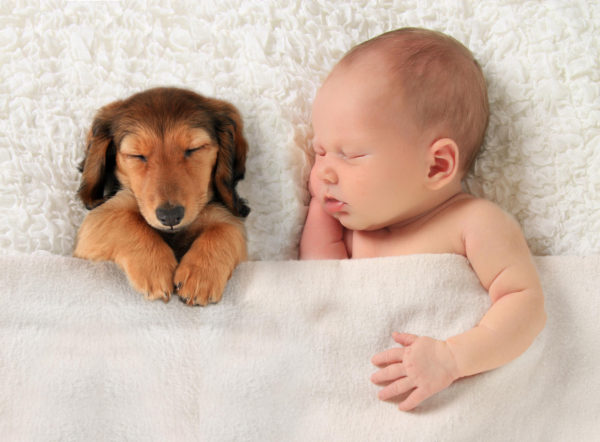 Which one is cuter?
