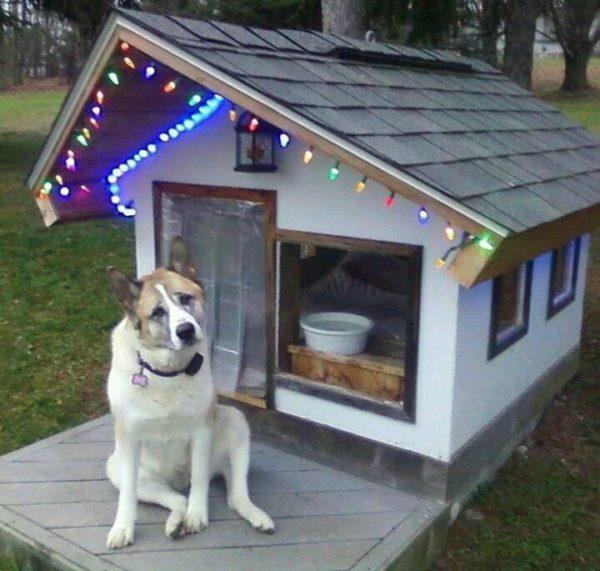 Stylish Christmas house