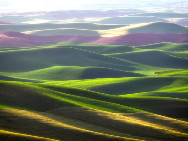 Steptoe Butte State Park, the Palouse, Washington