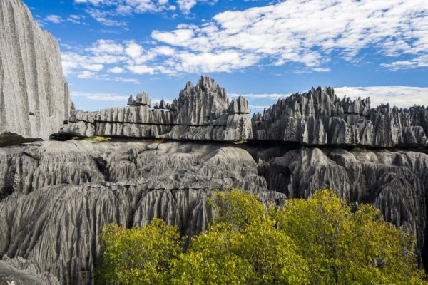 A stone forest, in Madagascar.