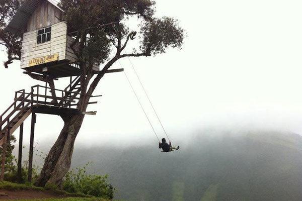Tarzan's house