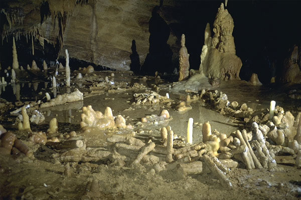 Neanderthal structures