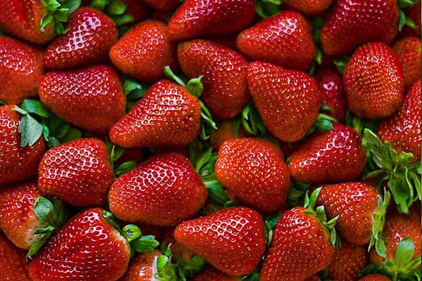 Modified strawberry