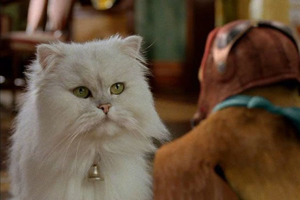 Snowbell, Stuart Little