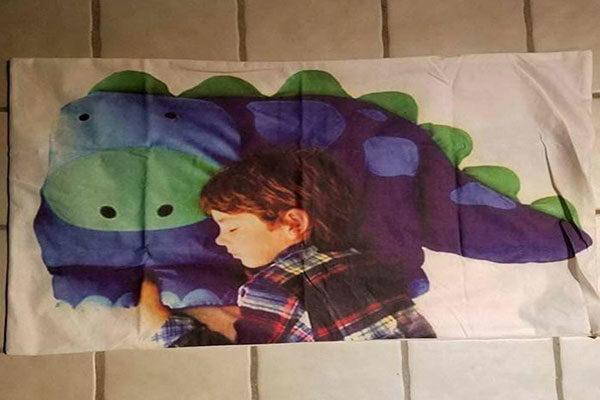 Dinosaur pillow