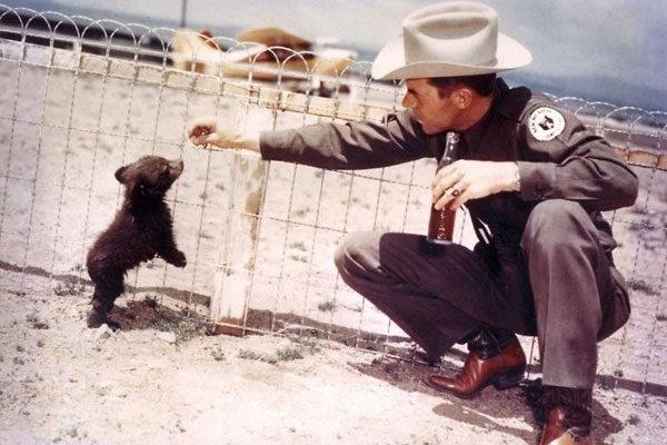 Smokey Bear, 1950